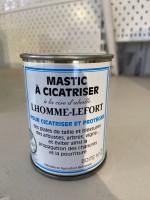 MASTIC A CICATRISER